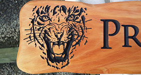 tiger carved into macrocarpa